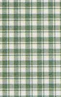 11.French Green Check Silk