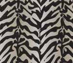 29.Zebra Cotton