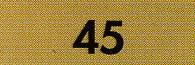 45 Dark Flesh Fimo