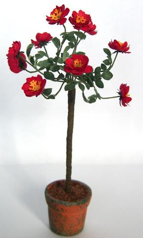 Red Rose Flower Kit